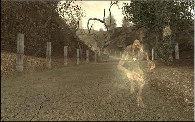 fantôme de la forêt